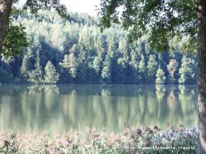 gamta (1)